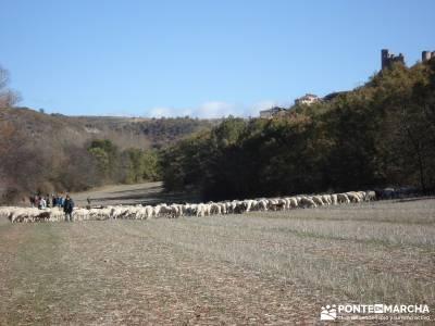 Parque Natural del Barranco Río Dulce;la rioja senderismo rutas senderismo leon